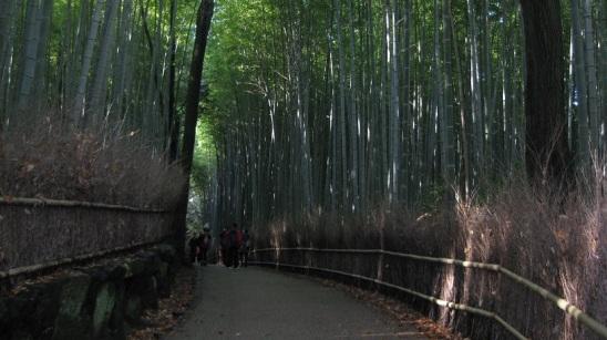arashiyama 4