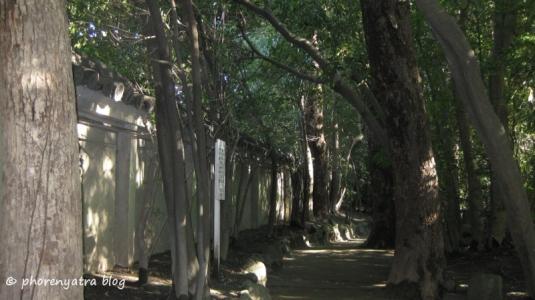 heian garden 6