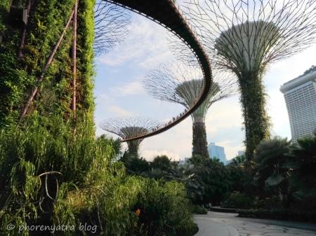 Gardens by the Bay Skywalk