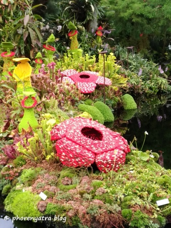 Gardens by the Bay Cloud Forest Lego Pieces